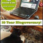 Happy 10th Blogoversary to Us!