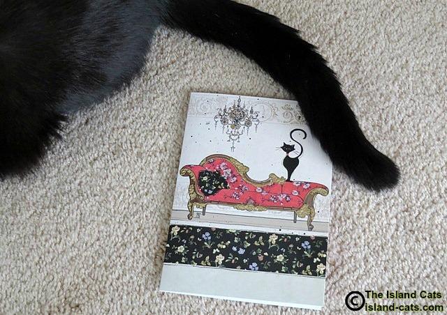 Such a pretty card!