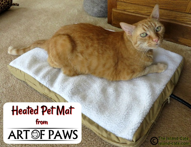 I'm staying warm on the Art of Paws heated pet mat