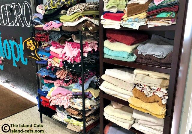 Folded blankets and towels at the shelter