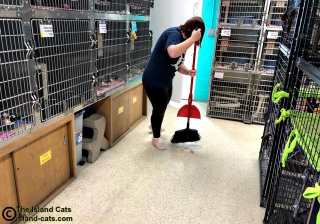 The floor is swept