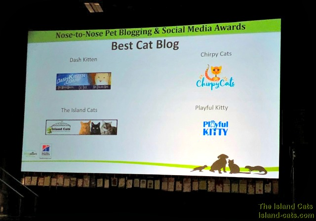 BlogPaws 2018 Best Cat Blog Finalists