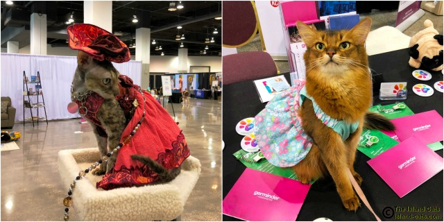 BlogPaws 2018 Coco and Summer