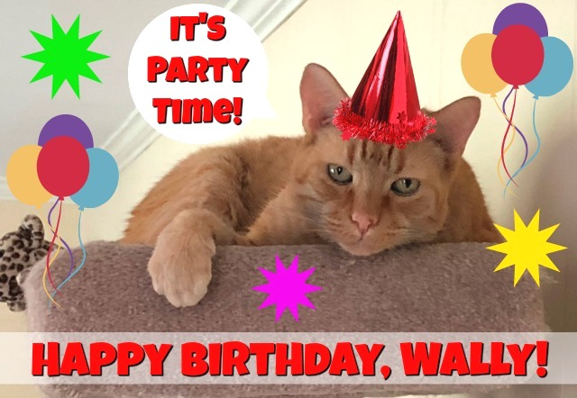 Wally Birthday 2018