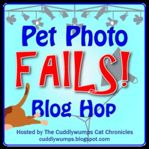Pet Photo Fail Blog Hop badge