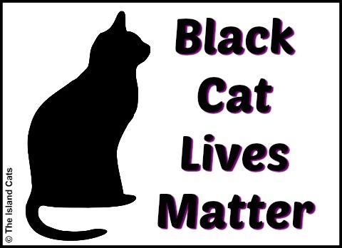 Black Cat Lives Matter