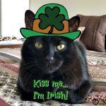 McErnie's St. Patrick's Day Selfie