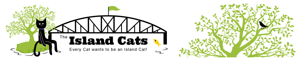 The Island Cats...Every Cat wants to be an Island Cat!