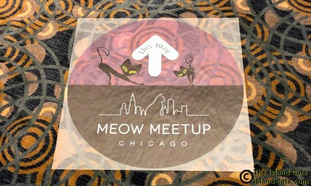 Meow MeetUp 2019