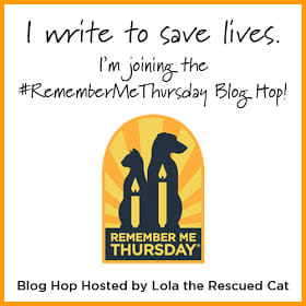 Remember Me Thursday Blog Hop logo