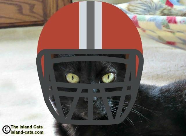 Ernie wearing a football helmet