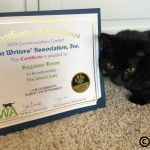 Cat Writers' Association Virtual Awards Ceremony