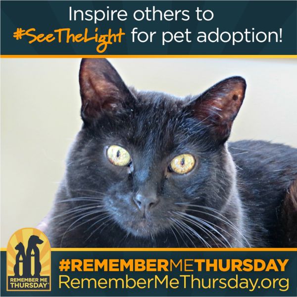 Remember Me Thursday graphic with Ernie