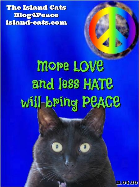 Island Cats BlogBlast4Peace graphic