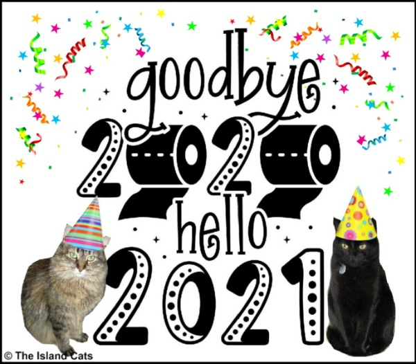 Happy New Year 2021 graphic