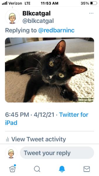 Tweet of Ernie's photo