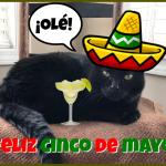 ¡Feliz Cinco de Mayo!