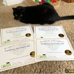 Thankful for Our Cat Writers' Association Certificates of Excellence