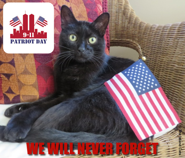 Patriot Day graphic - Ernie with American Flag