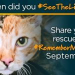 Inspire Others to #SeeTheLight for Pet Adoption #RememberMeThursday